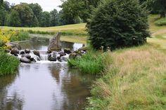 Natural Park, Short Trip, Castle, River, Nature, Outdoor, Beautiful, Plants, Outdoors