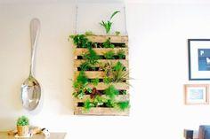 mur vegetal interieure en palette, plantes vertes, grande cuillère décoratif, idée bricolage avec de palettes, plantes vertes, activite manuelle