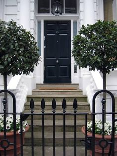 A wrought iron gate and pair of trees frame the steps toward a black panel door with silver hardware and a center knob.