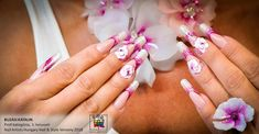French Manicure Nails, Type 3, Facebook, Photos, Beauty, Pictures, Beauty Illustration