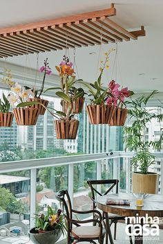 models of pergola in outdoor areas - photos - Coming home - Orchideen Hanging Orchid, Hanging Plants, Indoor Plants, Diy Hanging, Ceiling Hanging, Hanging Baskets, Patio Pergola, Diy Patio, Pergola Plans