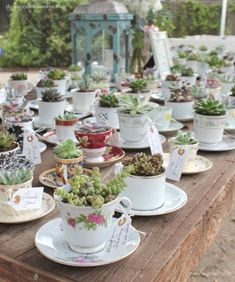 vintage teacups and party favors via milissweets.com