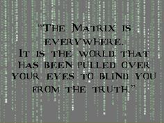 Discover and share Matrix Quotes. Explore our collection of motivational and famous quotes by authors you know and love. Matrix Film, The Matrix Movie, Glitch In The Matrix, Matrix Quotes, Blind Quotes, Latin Quote Tattoos, Question Everything, Movie Quotes, The Matrix