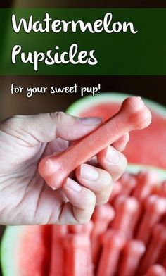 Homemade Dog Food DIY Frozen Watermelon Dog Treats - It is officially summer and your dog is feeling it ten fold. Make your own pupsicles with this two-ingredient Frozen Watermelon Dog Treat recipe. Puppy Treats, Diy Dog Treats, Healthy Dog Treats, Summer Dog Treats, Homade Dog Treats, Summer Snacks, Dog Biscuit Recipes, Dog Treat Recipes, Dog Food Recipes