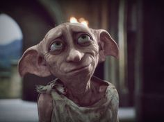 """What a beautiful place....to be with friends."" -Dobby♥"