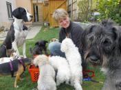 #suhl #freieswort  Wer seinen Hundeliebling nicht sich selbst überlassen will, kann ihn heutzutage in eine Hundetagesstätte bringen, kurz Huta genannt.