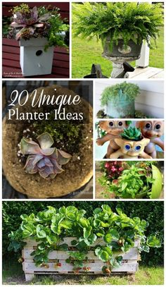 Be inspired by 20 unique planter ideas from talented bloggers all over the net. Unusual planters can add whimsy and fun to your outdoor decor.