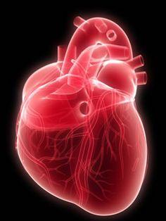 Células-tronco podem ser a chave para a cura da insuficiência cardíaca ~ PcD On-Line
