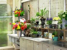 Garden Shed Organization-I wish my garden shed was this lovely.