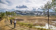 St Olavsleden – Hiking trail between Sweden and Norway Hiking Tours, Hiking Trails, Slow Travel, Pilgrim, Norway, Paths, Saints, Coast, How Are You Feeling
