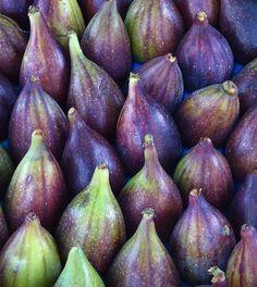 Fico: caratteristiche e proprietà di un frutto miracoloso