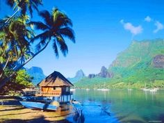 Breathtaking setting from your overwater bungalow on Cook's Bay!  My dream vacation!!