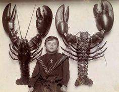 Мальчик и огромные омары