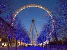 Aim: to visit winter wonderland