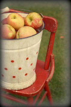 Apples in a cute bucket.