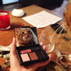 Pippa the Toyger Crazy Cat Lady, Crazy Cats, Holiday Parties, Kitty, Funny Stuff, Eye, Animals, Fashion, Little Kitty