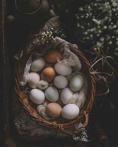 Eggs in Basket Dot Foods, Photo Food, Easy Eat, Cooking Ingredients, Chicken Eggs, Farm Gardens, Chickens Backyard, Farm Life, Farmer
