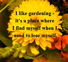 I like gardening- it's a place where I find myself when I need to lose myself.