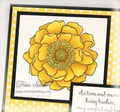 Blended Bloom by Stampin' Up! with Blendabilities