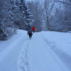 winterrunning winter