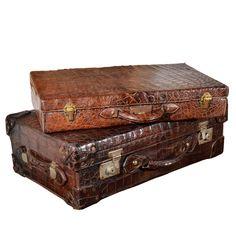 Vintage Alligator Luggage