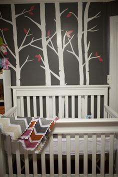 Nature Baby Themed Rooms Modern S Nursery Caitlin Elizabeth Photography You Could Go 1950 Teal And It Would