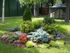garden shrubs disliked by deer Evergreen Landscape, Front Garden Landscape, Evergreen Garden, Landscape Design, Amazing Gardens, Beautiful Gardens, Shrubs For Landscaping, Garden Shrubs, Alpine Garden