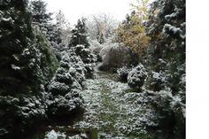 Občanské sdružení přátel pietního parku Draháň - Fotoalbum - Fotogalerie - ...zima přichází (2016) - 6 Snow, Park, Outdoor, Pictures, Photograph Album, Outdoors, Parks, Outdoor Games, The Great Outdoors