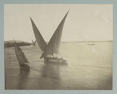 Vue du Nile    Digital ID: 81493. [186-188-]    Source: [Collection of photographs of Egypt and Nubia.] / A. Beato and others. (more info)    Repository: The New York Public Library. Photography Collection, Miriam and Ira D. Wallach Division of Art, Prints and Photographs.
