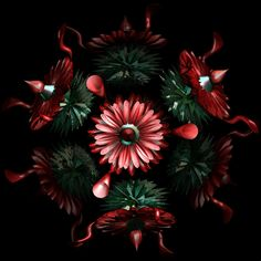 Discover & share this Flower GIF with everyone you know. GIPHY is how you search, share, discover, and create GIFs. Gifs, Flowers Gif, Free To Use Images, Good Morning Gif, Christmas Tree, Christmas Ornaments, Illustrations, High Quality Images, Animated Gif