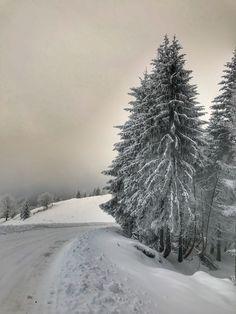 #unbelievable #love #winter #fairytale