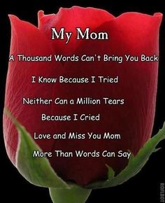 i love you mom mom 1000 words and 1 million tears will not bring you back Ive already tried. Love and miss you mom so much Miss My Mom Quotes, Mom In Heaven Quotes, Mom I Miss You, Daughter Quotes, Mother Quotes, Missing Mom In Heaven, Dad Quotes, Mom Daughter, Mom Poems