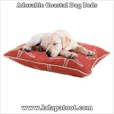 Adorable Coastal Dog Beds at www.lalapatoot.com