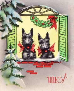 Hello! Scotties give a Christmas shout-out, ca. 1930s. Vintage card Scottish Terrier