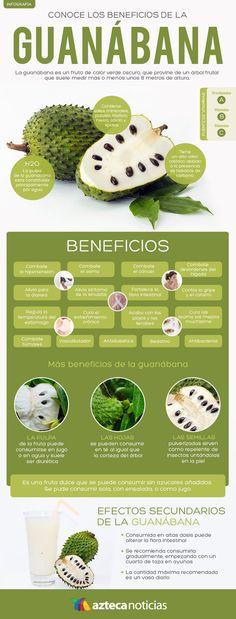 Conoce los beneficios de la guanábana #infografia