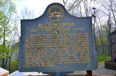 Blood Mtn. Appalachian trail Georgia