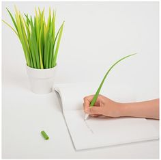 Grass Pens!  Do you have a pen I can borrow? No. Ooooh.