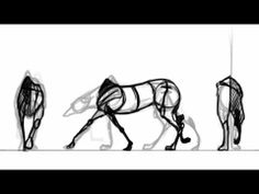 quad walk cycle  ★ || Animate || ★  Find more at https://www.facebook.com/iAnimate.net http://www.pinterest.com/ianimateschool/ #ianimate  iAnimate.net is quite simply the best animation program in the world. #best #animation #quad #fourlegged