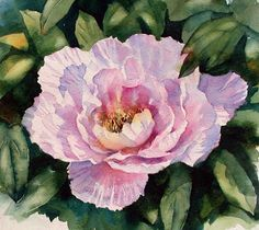 Ann Mortimer's Painting Blog: Peony watercolour sketch