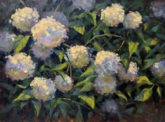 White Hydrangeas Painting - Annabelle Summer by Donna Shortt