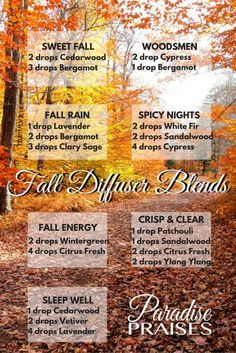 Image result for printable essential oils diffuser blends for fall