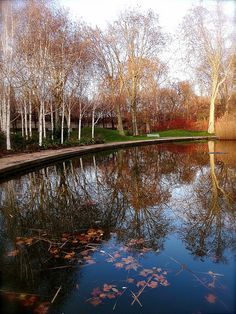 Parc de Bercy 0071 b Mein Blog #tumblr France Landscape, Tumblr, Parcs, Landscape Architecture, Paris France, Garden Landscaping, Public, England, Italy