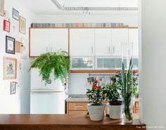 27-decoracao-cozinha-armários-samambaia