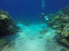 Scuba, Ύφαλος, Palau, Κανάλι Ulong