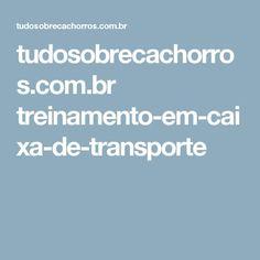 tudosobrecachorros.com.br treinamento-em-caixa-de-transporte
