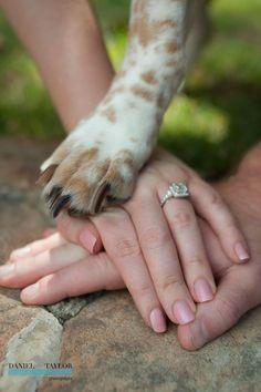 Idea de foto de compromiso con el perro