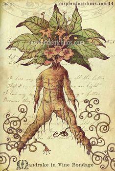 Botany in Wonderland book