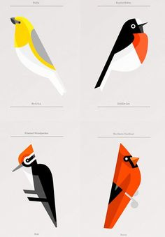 Minimalist bird illustration