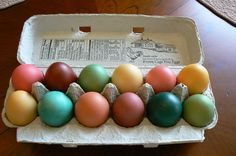 dyed brown eggs