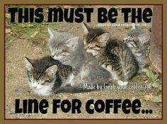 This must be the line for coffee.
